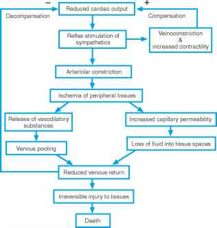 Action Potential Pain Flow Chart