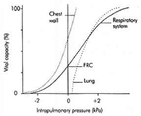Lung Chest Wall Compliance