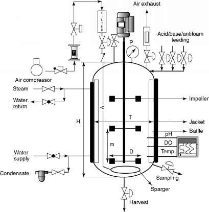 Bioreactor Configurations 341 Submerged Fermentor Systems on air end