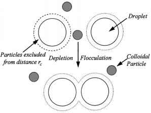 Depletion Interaction