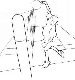 Biomechanical Principles Volleyball